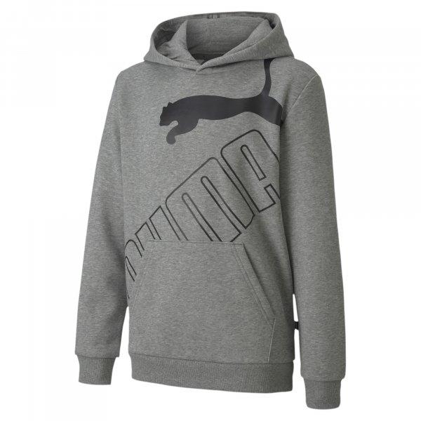 PUMA Sweatshirt 10570214