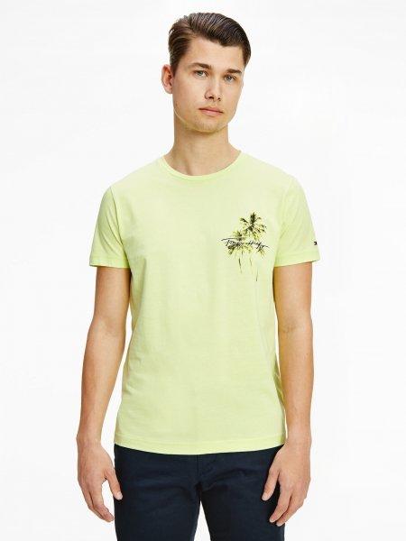 TOMMY HILFIGER T-Shirt 10619555